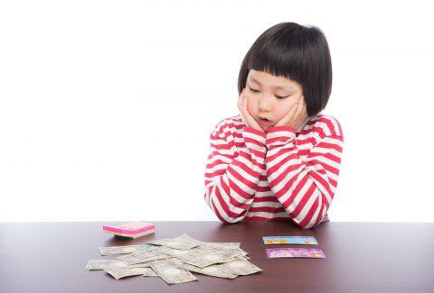 袋分けで家計管理、それ付録のマルチケースでいいんじゃない?