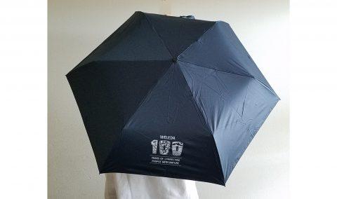 【フラゲレビュー】SPRiNG(スプリング)2021年8月号《特別付録》WELEDA(ヴェレダ)日差しから美髪・美肌を守る! 晴雨兼用折りたたみ傘