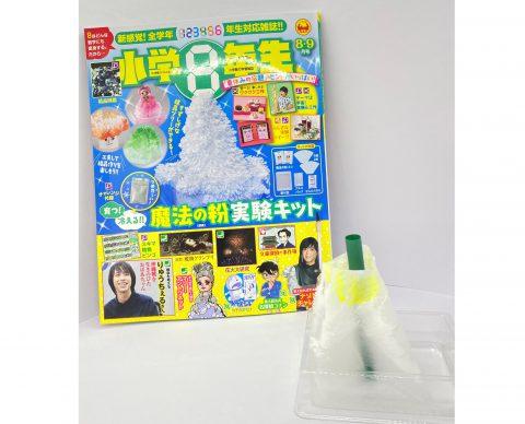 【開封レビュー】小学8年生 2021年8・9月号《特別付録》育つ!冷える!!魔法の粉実験キット