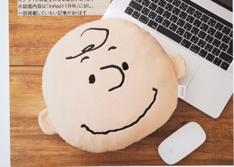 【次号予告】InRed(インレッド)2021年11月号宝島チャンネル限定号《特別付録》チャーリー・ブラウン 一緒にリラックス♥ ふわふわクッション